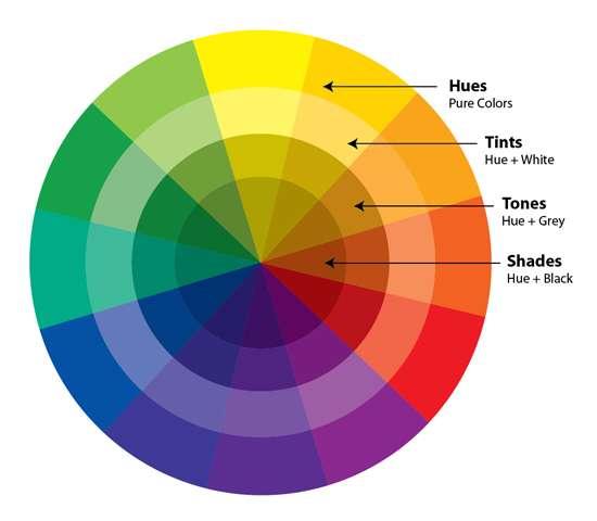 Basic Color Theory Wheel